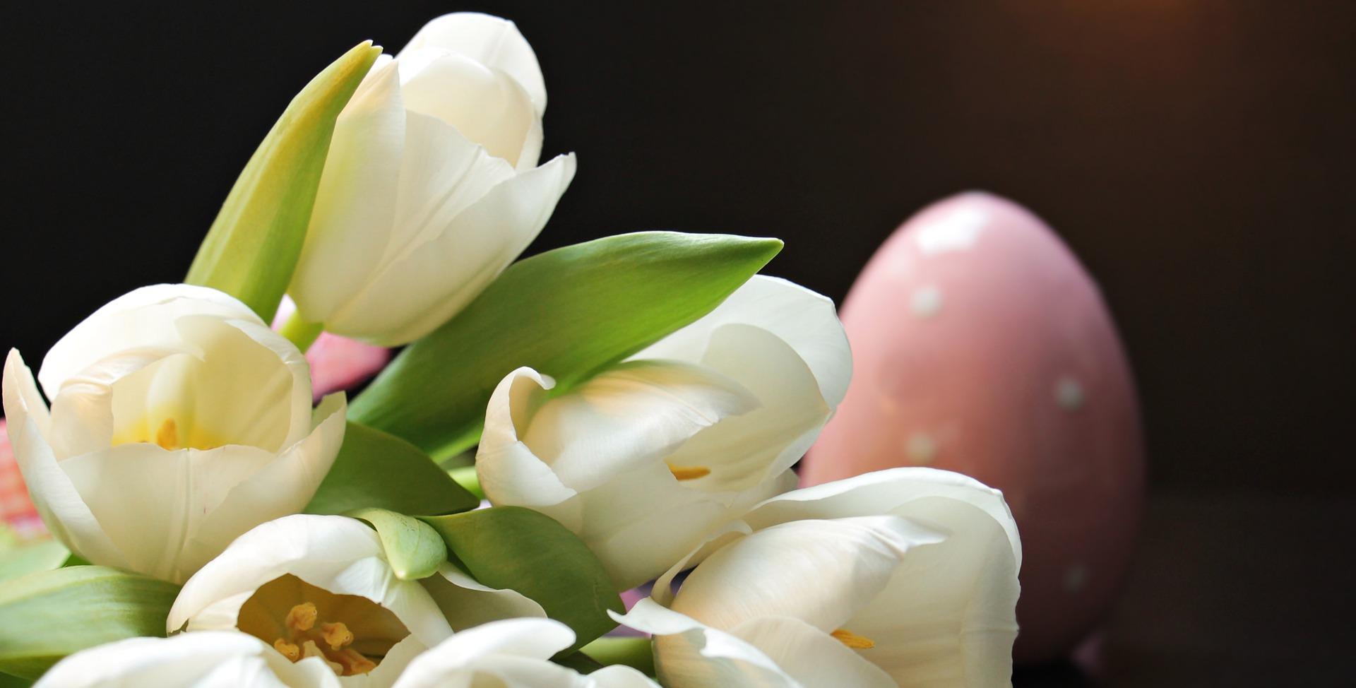 Húsvétra ajándékozd a természet erejét!